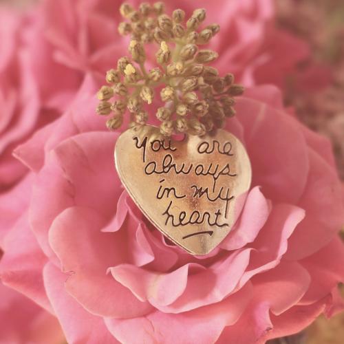 ピンクのバラとメッセージカード