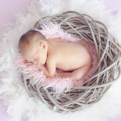 赤ちゃんがピンクの羽のはいったカゴで寝ている