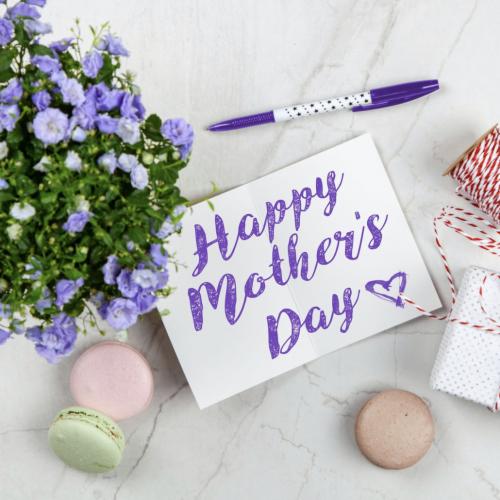 紫のカーネーションと母の日のカード
